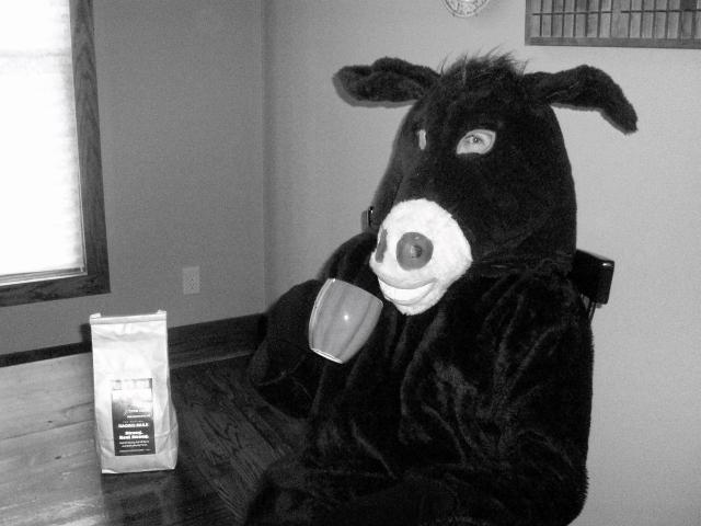 donkey suit1